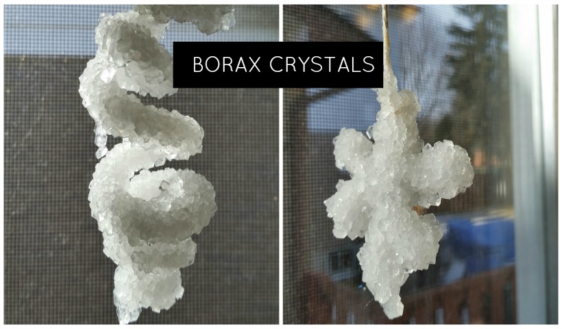 scholastic grow your own crystals instructions
